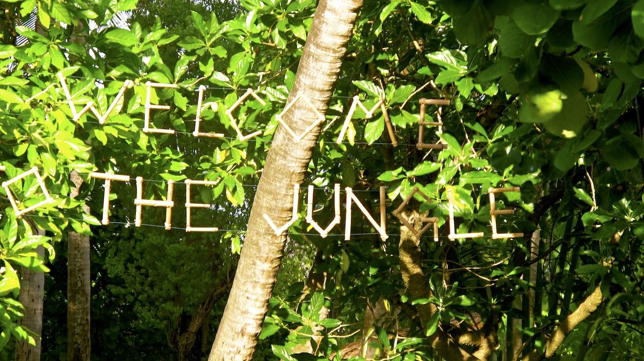Tropical Jungle Destination Wedding